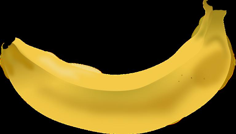 banana, fruit, food-310449.jpg